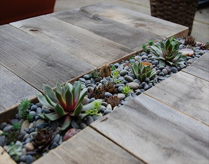 DIY Plant Table With Succulents