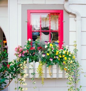30 Bright and Beautiful Window Box Planters