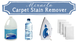 Miracle Carpet Stain Remover Recipe . . . Just 2 Ingredients!