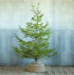 5 Alternatives to Christmas Tree Skirts