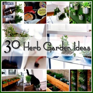 30 Great Herb Garden Ideas