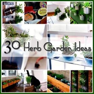 30 Great Herb Garden Ideas