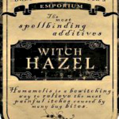 The Many Uses of Witch Hazel