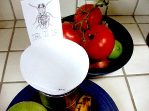 Top 10 Posts on How to Get Rid of Fruits Flies Including Fruit Fly Traps