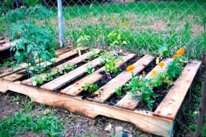 25 Ways To Use Pallets In Your Garden