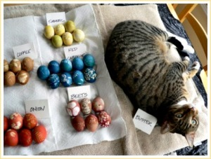 How to Naturally Dye Easter Eggs with the Help of Your Garden
