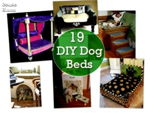 19 DIY Dog Beds You Can Make at Home