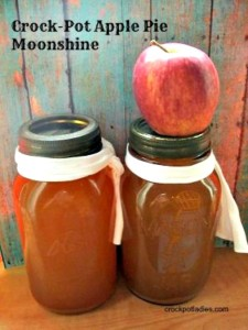 How to Make Crock Pot  Apple Pie Moonshine for Adults