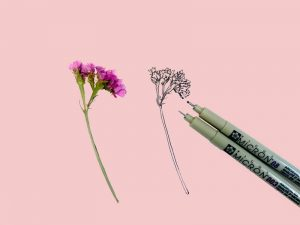 How to Draw a Wildflower